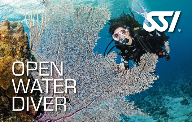 Open Water Diver Kurs (OWD) KURS @ Tauchschschule scubaboard Linz | Linz | Oberösterreich | Österreich