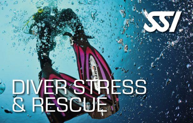 SSI Stress & Rescue Kurs @ scubaboard Linz | Linz | Oberösterreich | Österreich